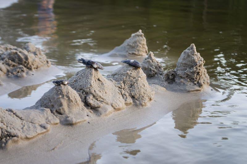Sandslottar på banken av floden Mild bakgrund med pastellfärgade färger och reflexioner i vattnet arkivbild