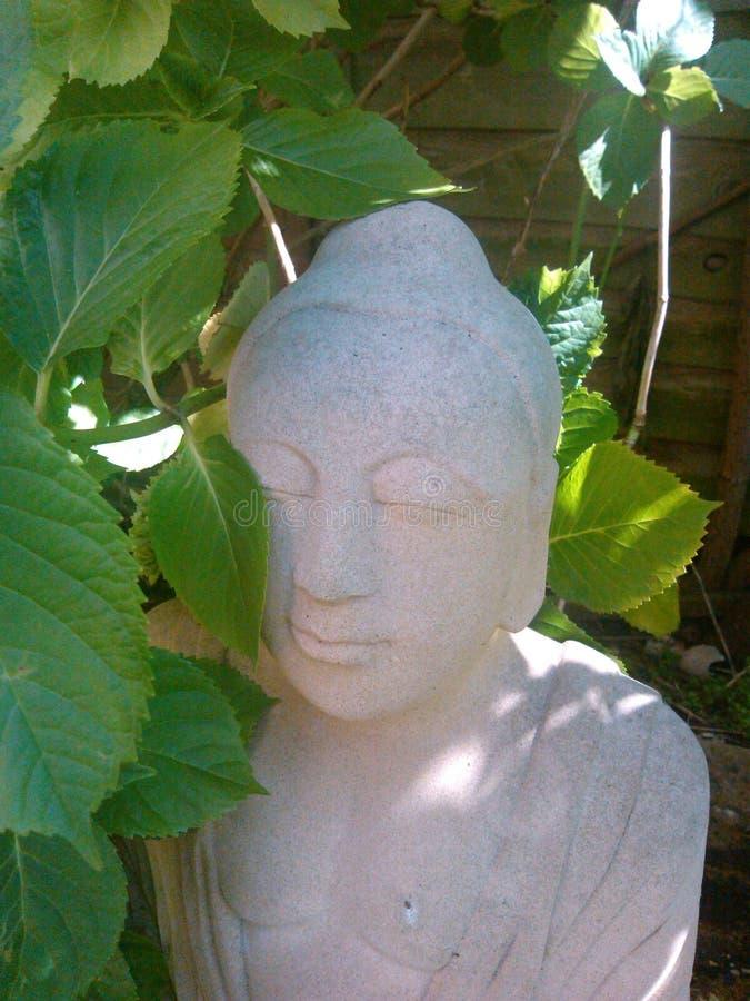 Sandstein Buddha teils versteckt hinter einem Hortensia lizenzfreies stockfoto