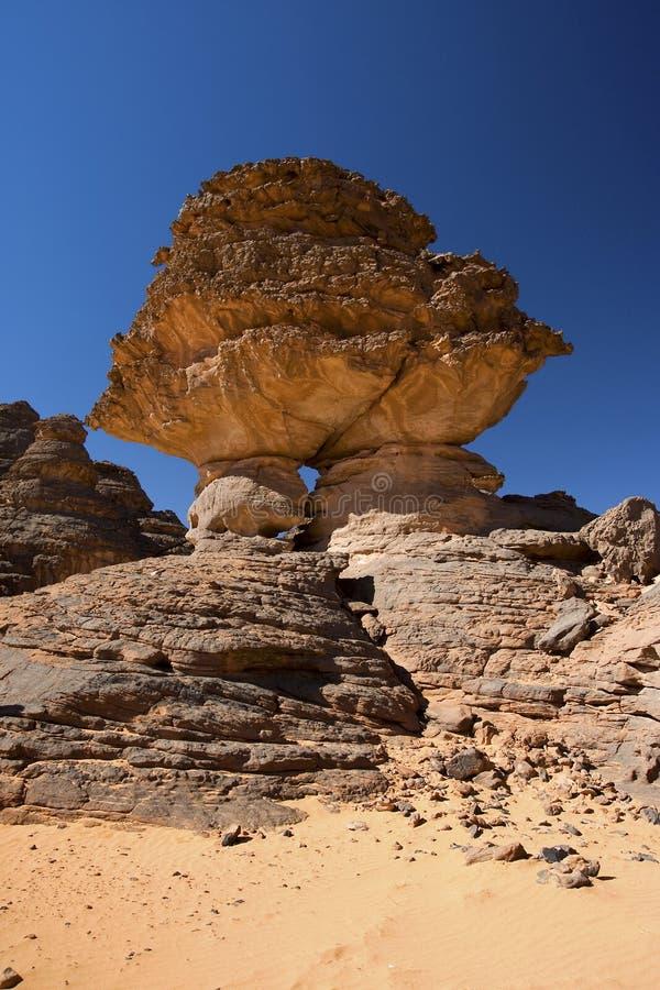 Sandsteinfelsen in der Wüste lizenzfreie stockbilder