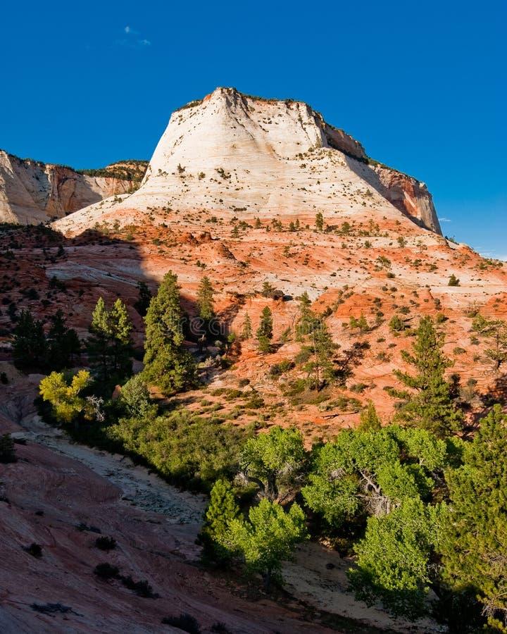 Sandsteinklippen zion im Nationalpark lizenzfreie stockfotos