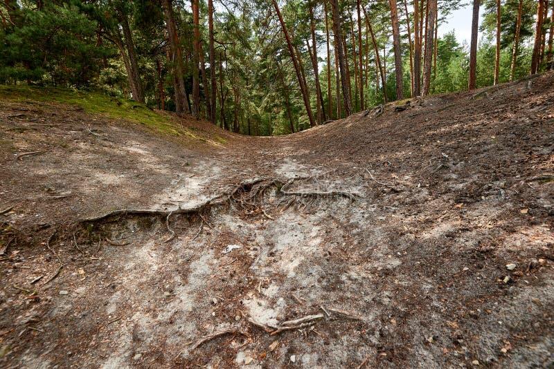 Sandstone caves in Blankenburg Harz Germany royalty free stock image