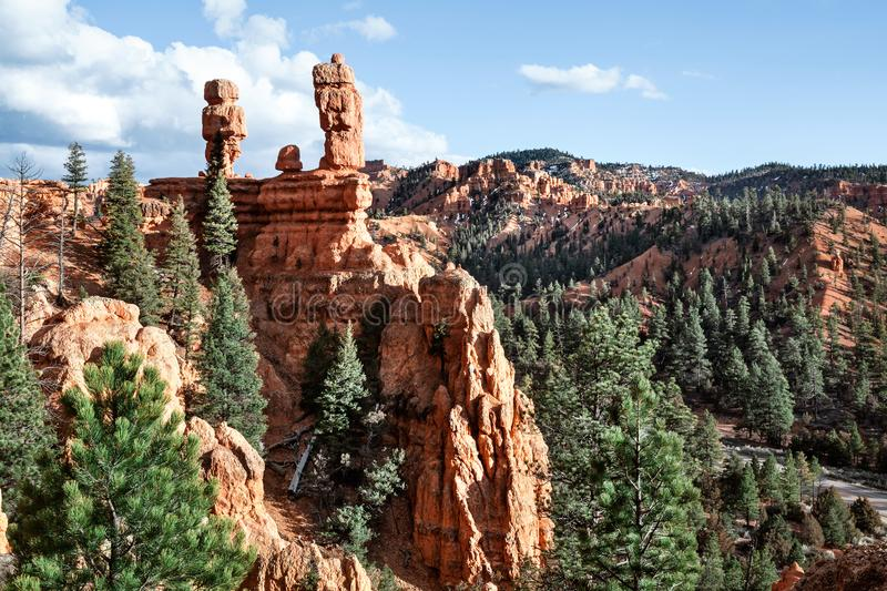 Sandstone Hoodoo Landscape With Pine Trees, USA stock image