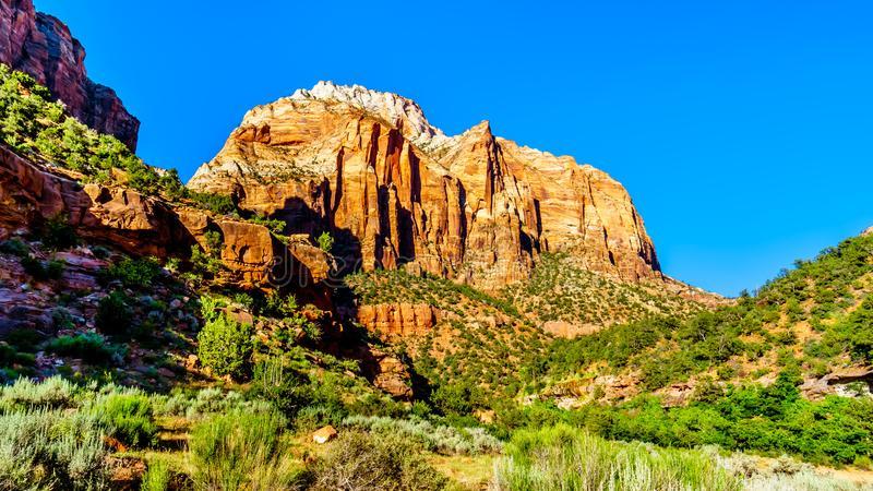 Sandstone mountains in Zion National Park in Utah, United States. Sunset over the rugged sandstone mountains in Zion National Park in Utah, United States royalty free stock photos
