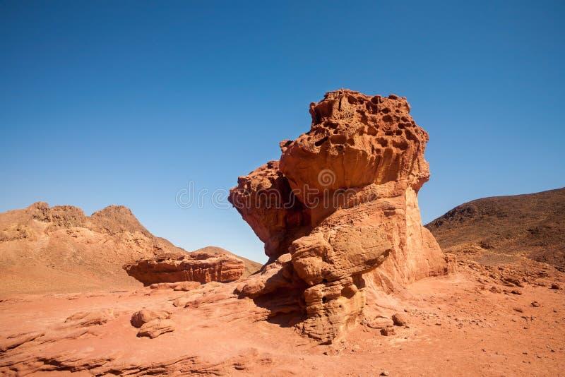 Sandstone Mushroom from the desert royalty free stock images