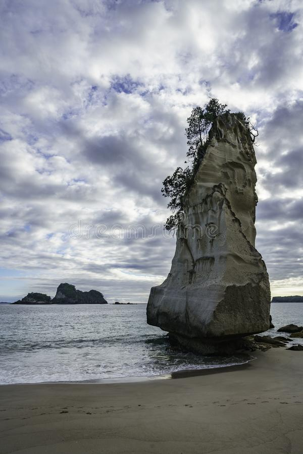 Sandstone rock monolith,cathedral cove,coromandel,new zealand 8. Sand and the mighty sandstone rock monolith in the water of cathedral cove,coromandel, new stock photo