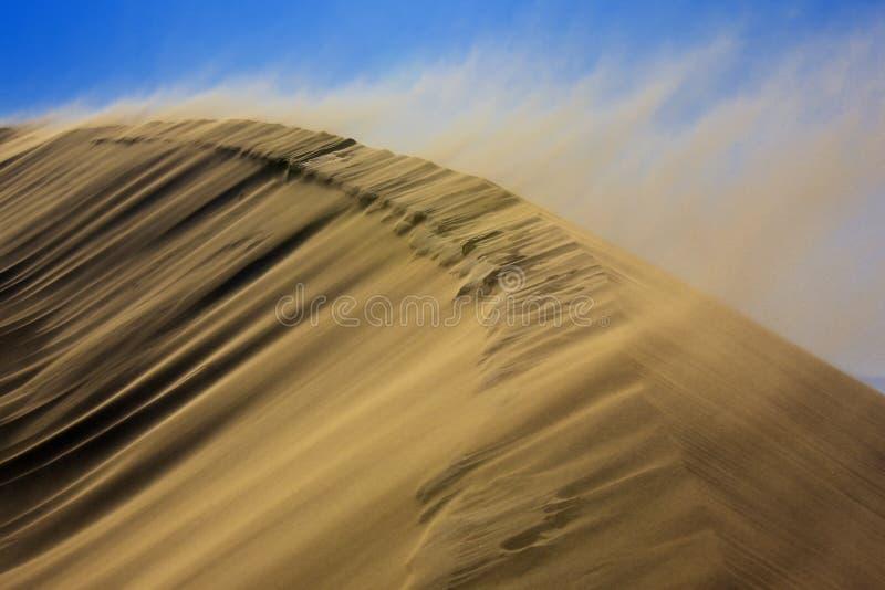 Sandstorm on dune royalty free stock photo