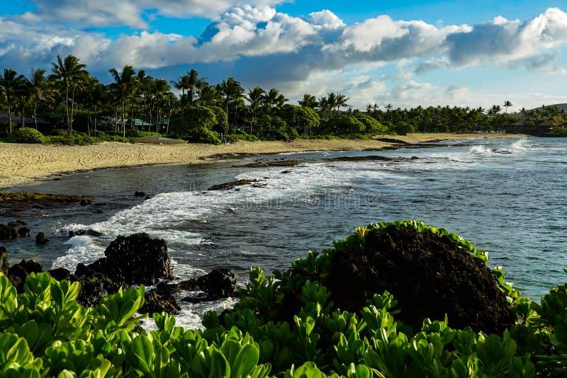 Sandstrand på den stora ön av Hawaii fotografering för bildbyråer