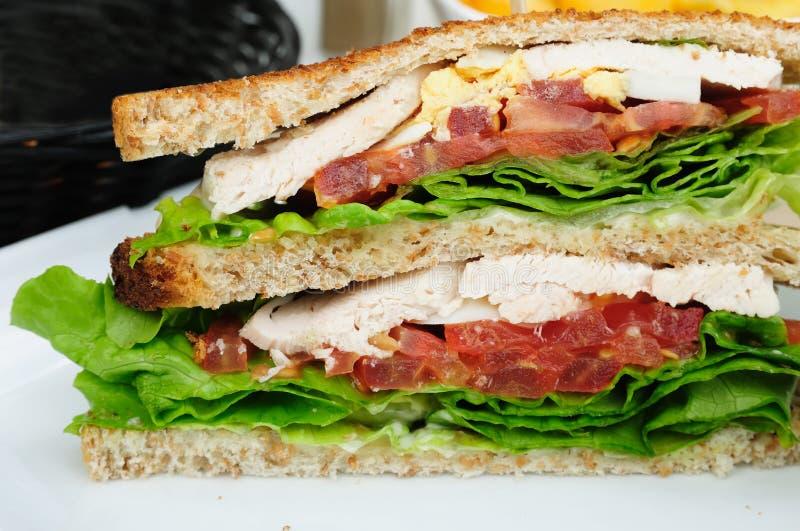 Sanduíche com bacon fotos de stock