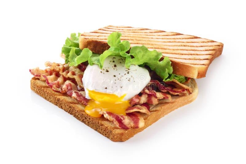 Sanduíche com bacon, ovo escalfado e alface imagem de stock royalty free