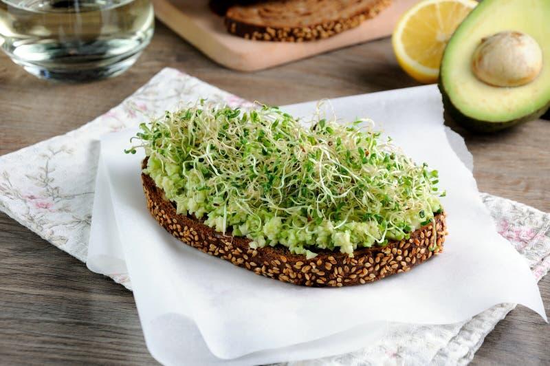 Sanduíche com os brotos do abacate e de alfafa imagem de stock royalty free