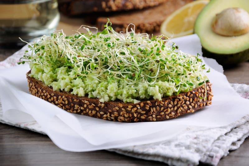 Sanduíche com os brotos do abacate e de alfafa imagem de stock