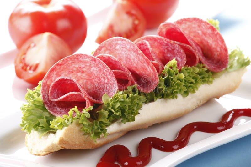 Sanduíche com salami fotografia de stock royalty free
