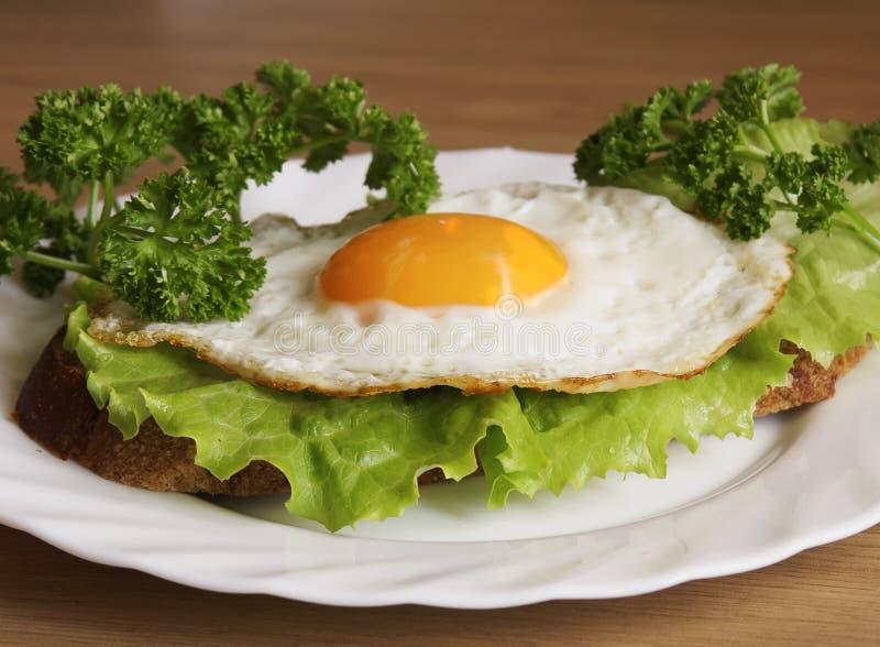 Sanduíche com um ovo fritado fotos de stock