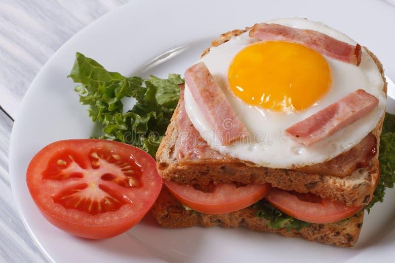 Sanduíche com um ovo frito, bacon fotografia de stock royalty free