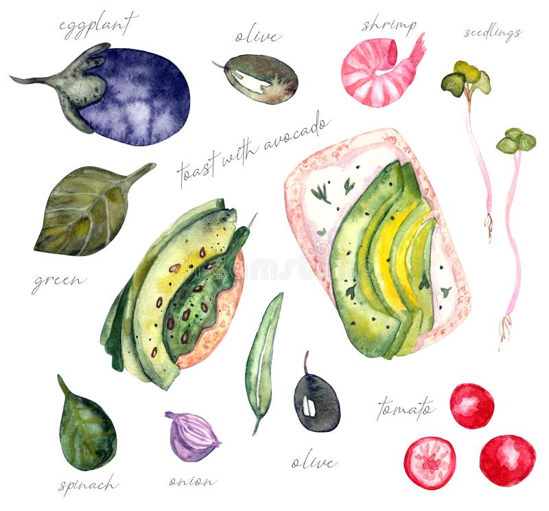 Sanduíche da aquarela do abacate ilustração stock