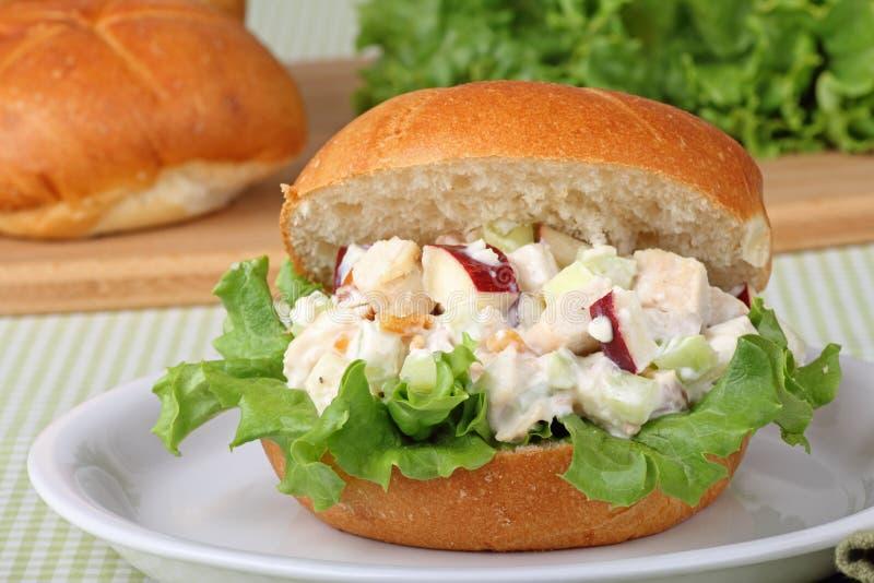 Sanduíche da salada da galinha imagens de stock