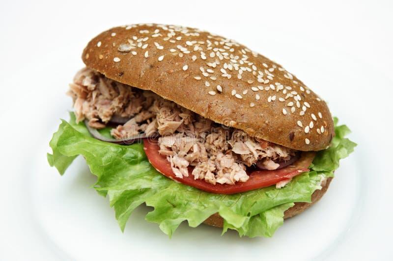 Sanduíche da salada de atum foto de stock royalty free