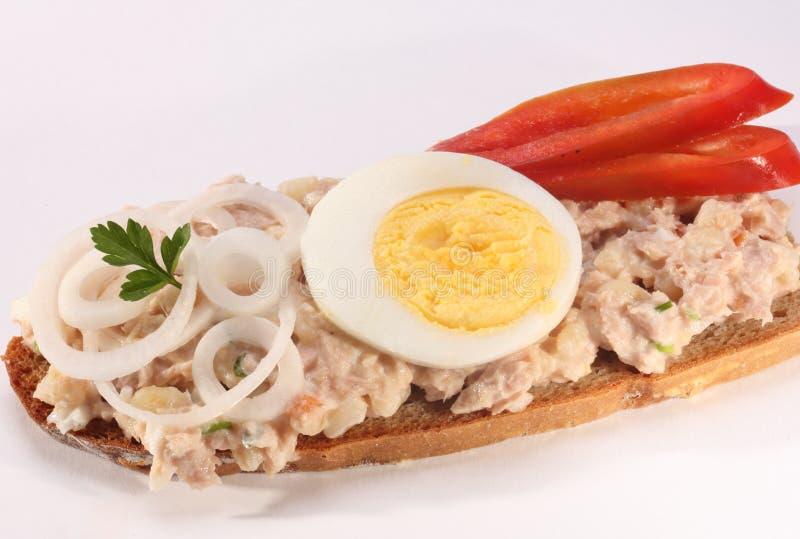 Sanduíche da salada de atum imagens de stock royalty free