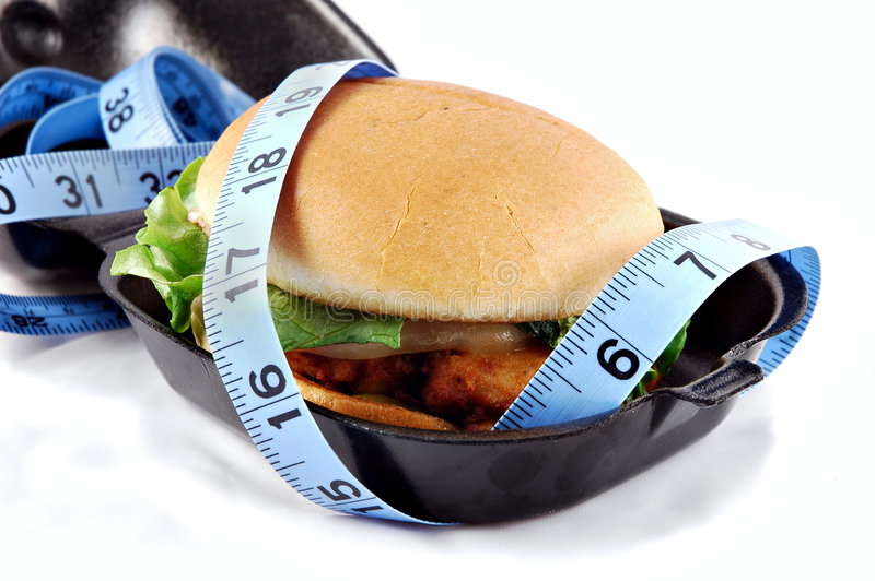 Sanduíche de galinha gordo imagem de stock royalty free
