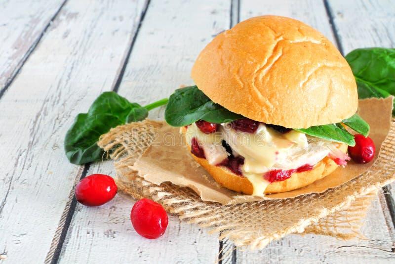 Sanduíche de peru Roasted com molho de arando e queijo, fim acima na madeira branca foto de stock royalty free