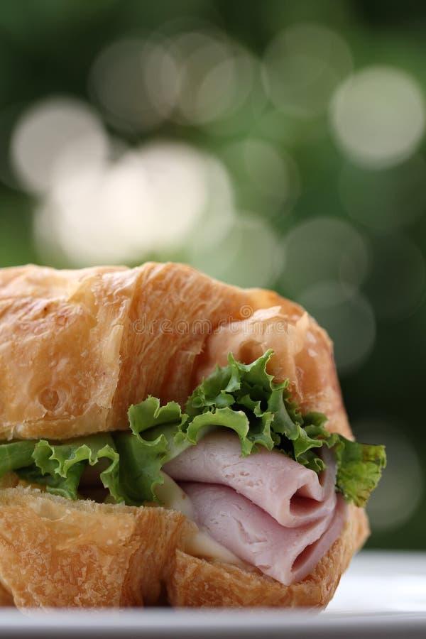 Sanduíche de presunto americano do fast food imagens de stock