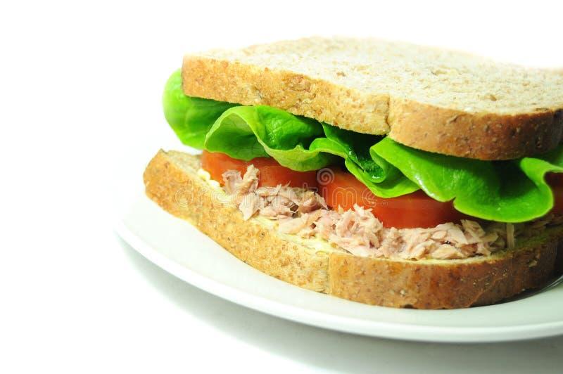 Sanduíche do atum imagens de stock