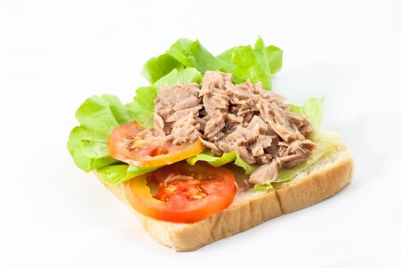 Sanduíche do atum imagens de stock royalty free