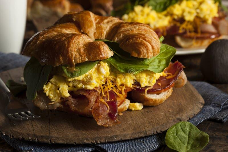 Sanduíche do café da manhã do ovo do presunto e do queijo fotografia de stock