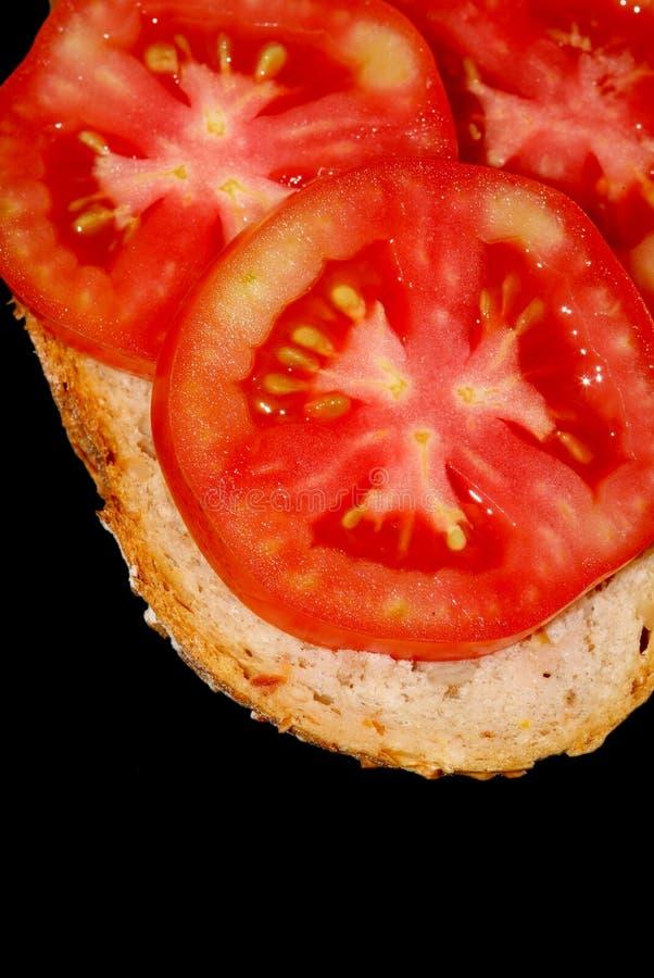 Sanduíche do tomate fotos de stock royalty free