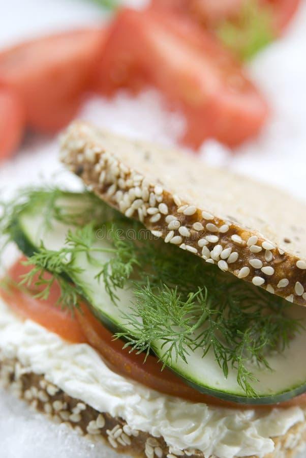 Sanduíche do vegetariano imagens de stock
