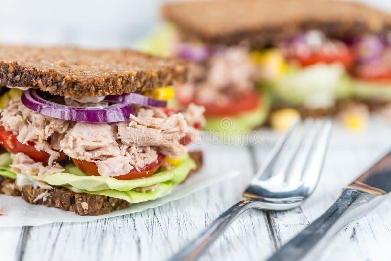 Sanduíche feito fresco do atum com pão de wholemeal & x28; focus& seletivo x29; fotos de stock