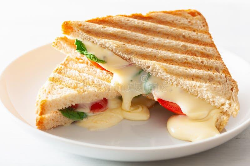 Sanduíche grelhado do queijo e do tomate no fundo branco fotos de stock royalty free