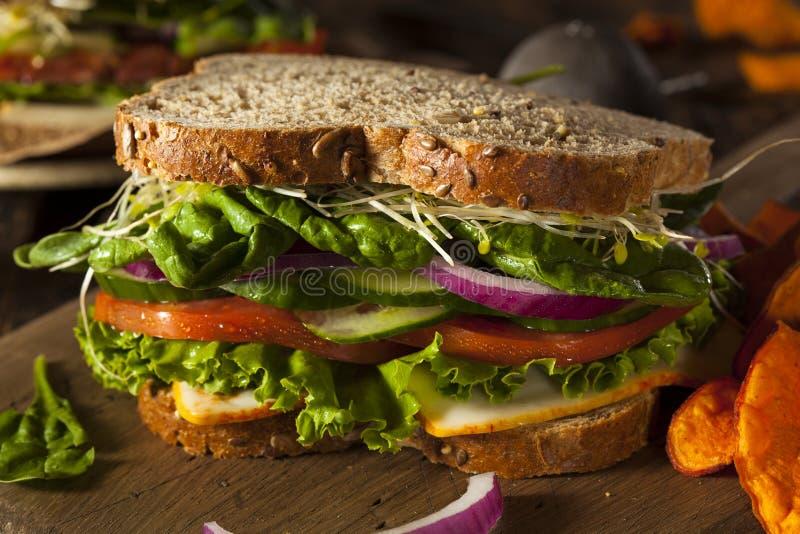 Sanduíche saudável do vegetariano do vegetariano imagem de stock