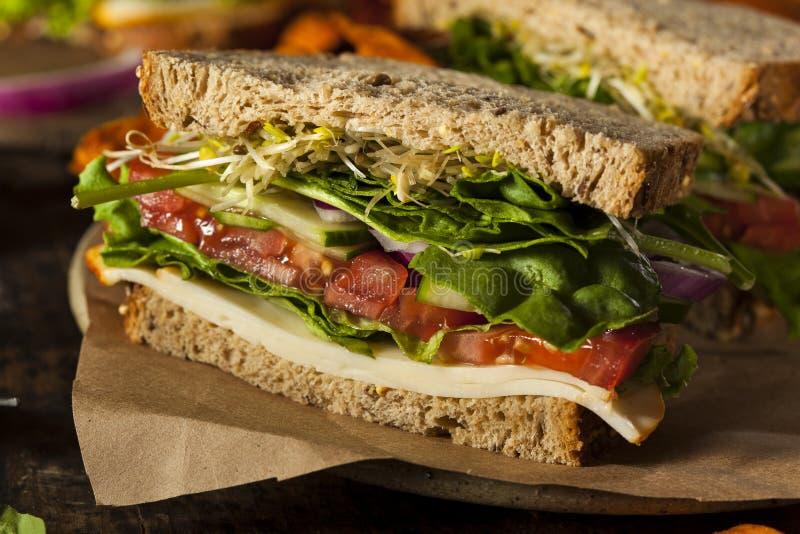 Sanduíche saudável do vegetariano do vegetariano foto de stock