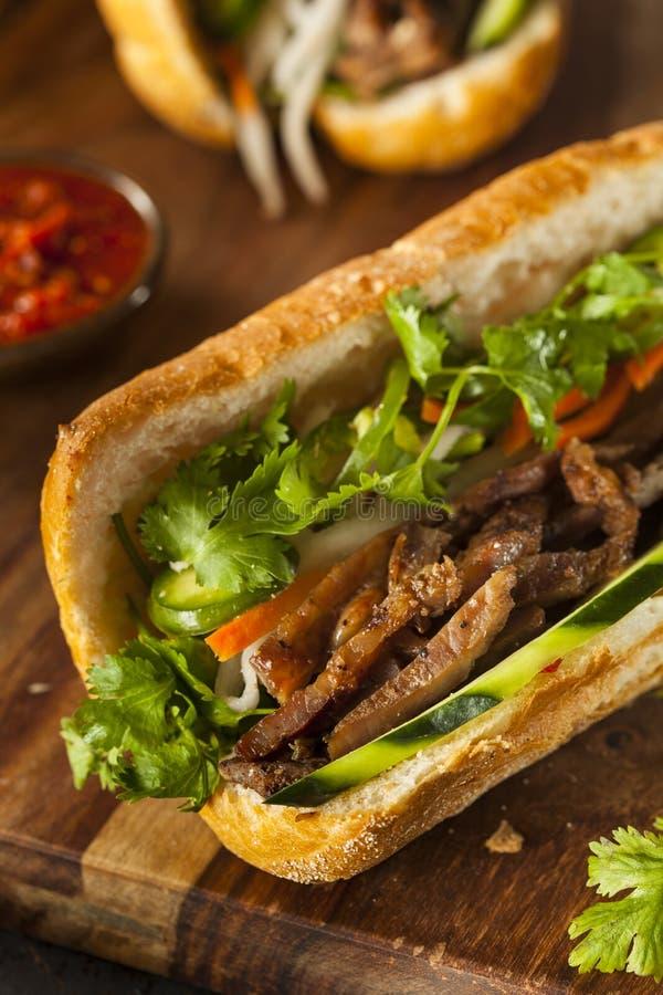 Sanduíche vietnamiano de Banh MI da carne de porco imagem de stock royalty free