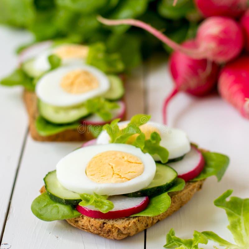 Sanduíches com ovo, rabanete e alface verde fotografia de stock royalty free