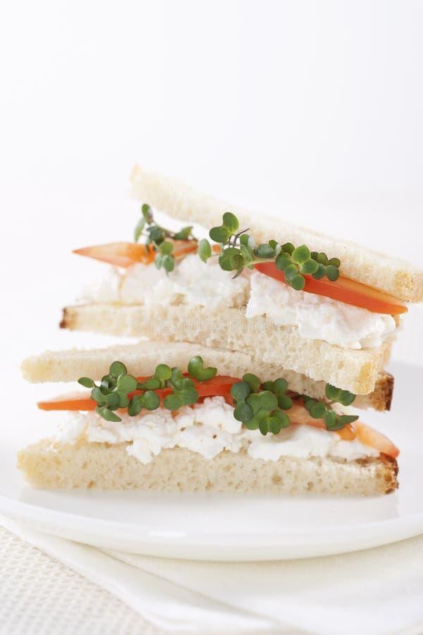 Sanduíches do vegetariano imagem de stock royalty free