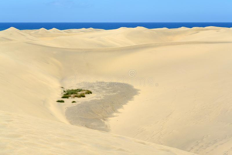 Sandwüste auf der Küste Maspalomas, Gran Canaria stockfotos