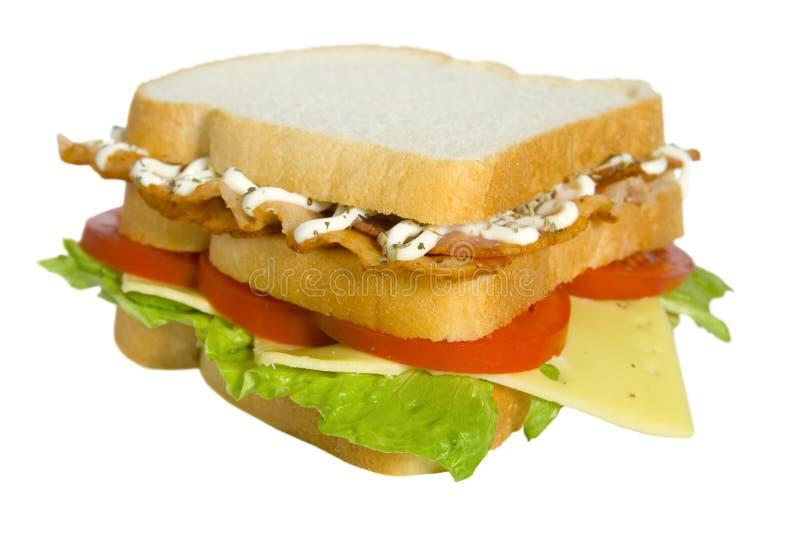 Sandwich à club de BLT photos libres de droits