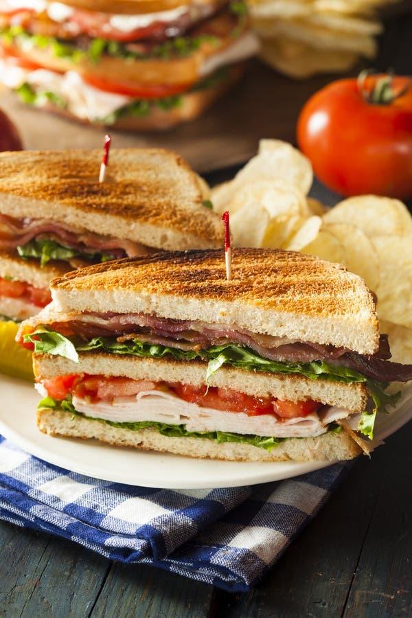 Sandwich à club de la Turquie et du lard images stock