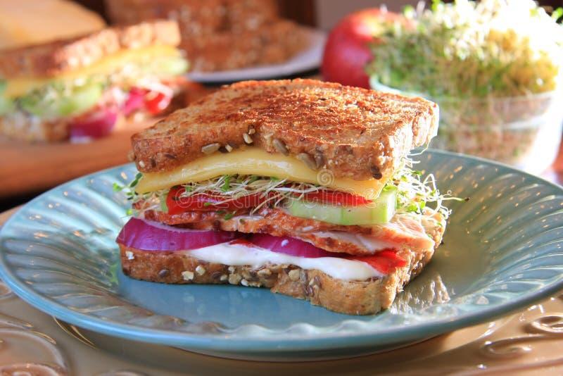 Sandwich à dinde gastronome photo stock