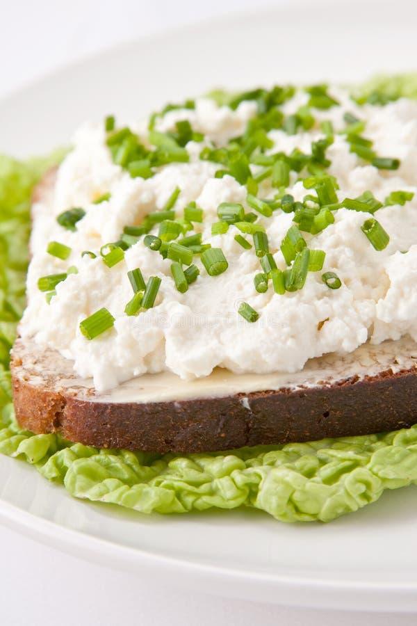 Sandwich à fromage blanc photographie stock libre de droits