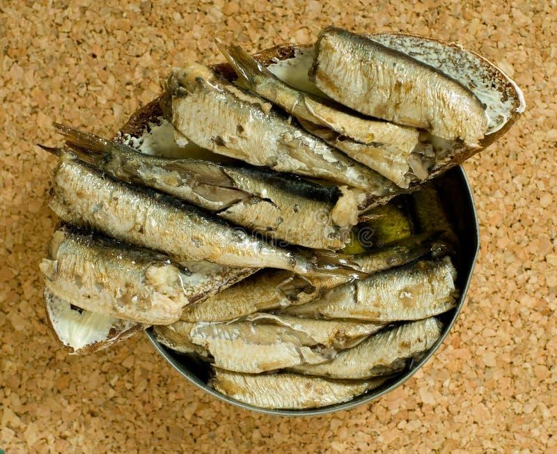 Sandwich à poissons photos stock