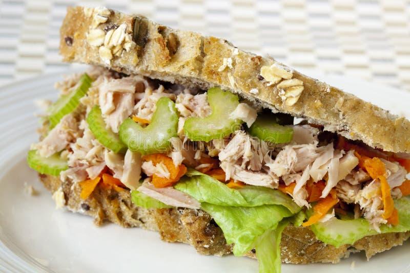 Sandwich à thon photographie stock