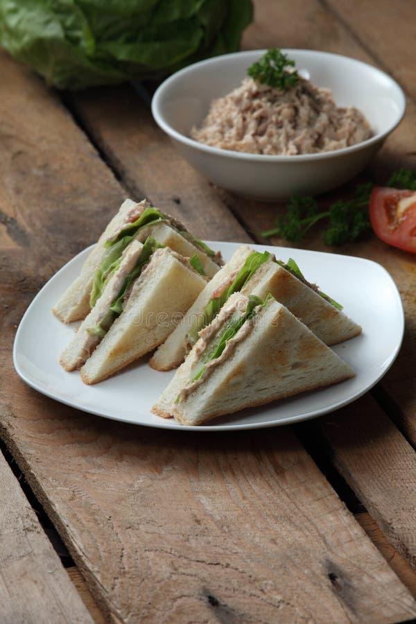 Sandwich à thon photographie stock libre de droits