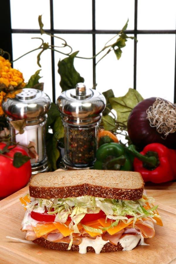 Sandwich à Turquie images libres de droits