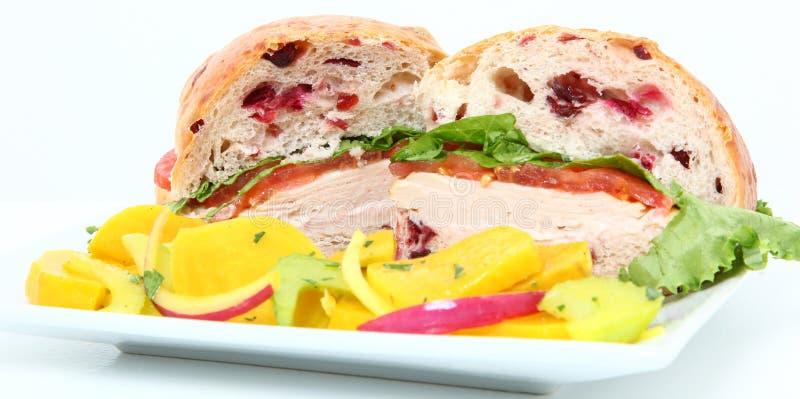 Sandwich à Turquie de canneberge images libres de droits