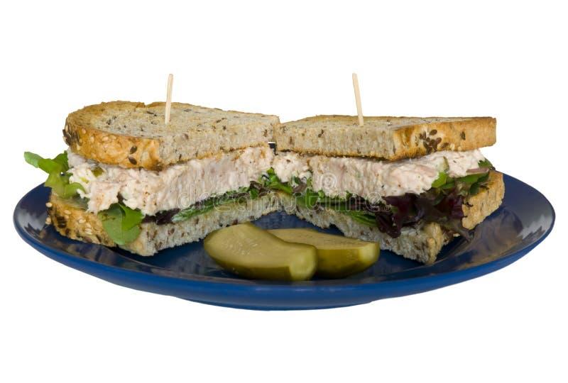 Sandwich 1 van de tonijn royalty-vrije stock afbeeldingen