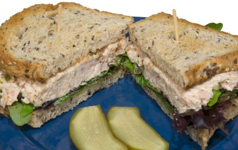 Sandwich 1 van de tonijn stock afbeelding