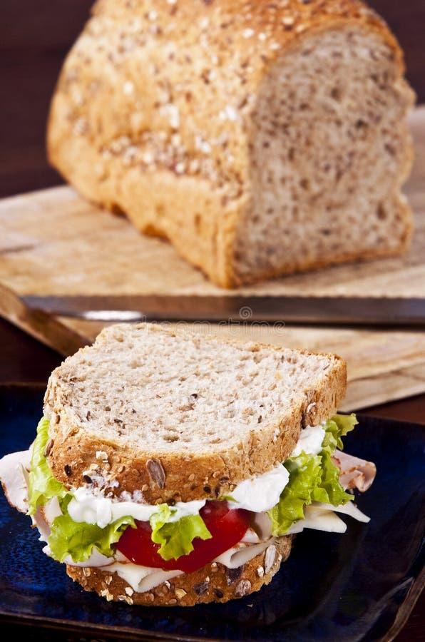 Download Sandwich stock image. Image of sandwich, whole, calories - 10057343
